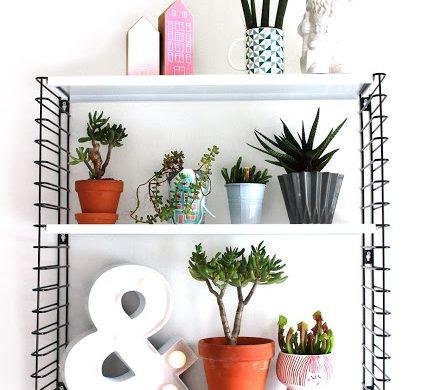 plantshelfie